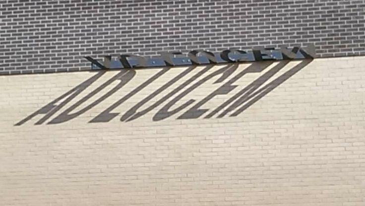 Environmental graphics at Newland School for Girls in Hull. via Joana Niemeyer