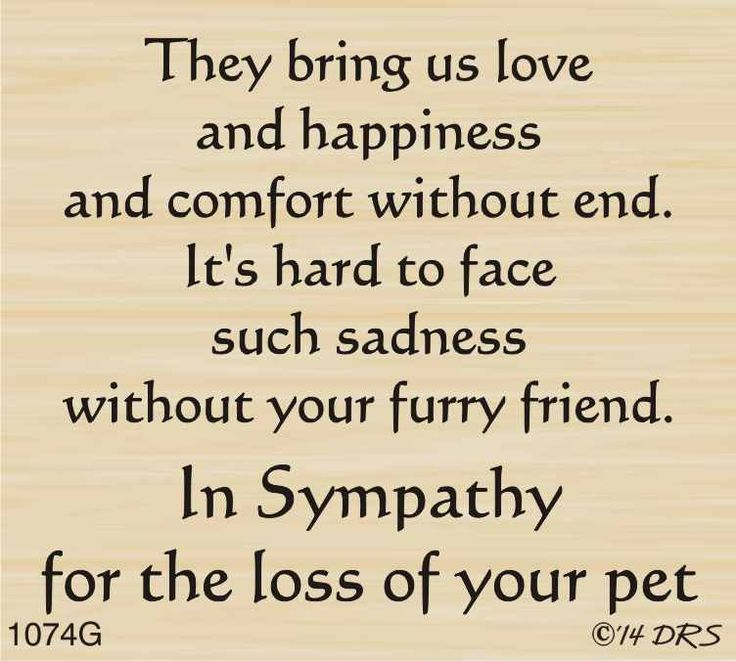 Furry Friend Sympathy Greeting - 1074G - DRS Designs                                                                                                                                                                                 More