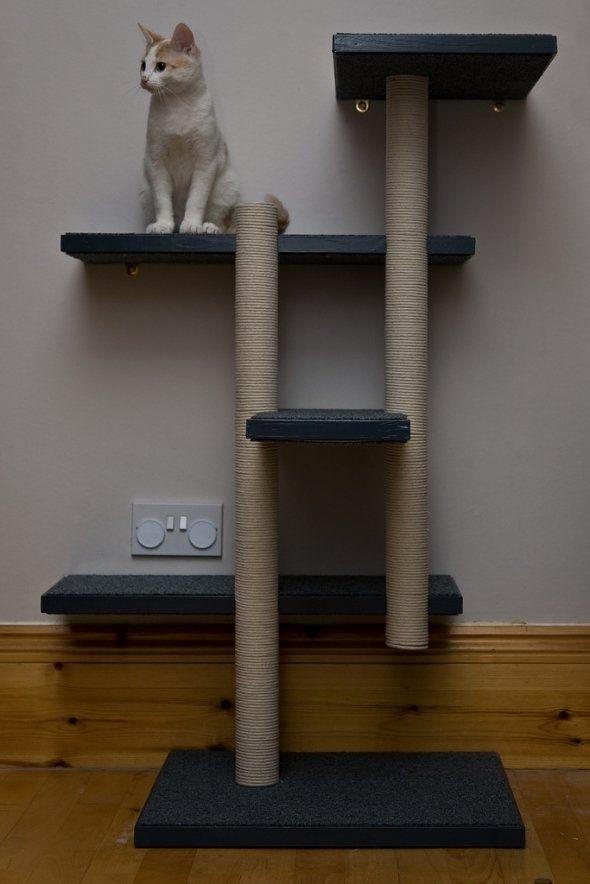 1000 ideas about best cat tree on pinterest diy cat for Diy cat tree