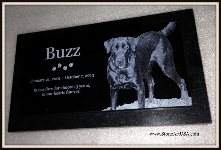 R.I.P. Buzz ~ New Ideas for Pet Grave Stones ... Custom made memorial stones & cremation urns for pets. The granite is laser etched with your pet's photo and your words. Markers will stay beautiful for generations in the yard or cemetery. Memorial stones can be made for people too as well as for our beloved dogs, cats & all pets. See more at www.StoneArtUSA.com Let me know if you have any questions, Eric @ StoneArtUSA