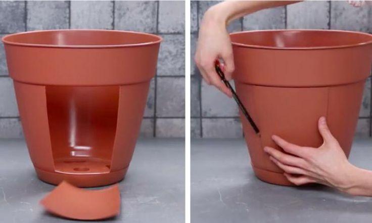 Elle coupe des rectangles dans un pot à fleurs en plastique! Son astuce jardinage est tellement brillante!