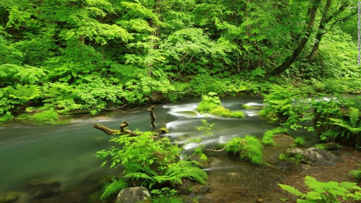 The park is made up of two areas -- Hachimantai and Towada-Hakkoda, the latter of which includes Honshu's largest crater lake, Lake Towada, and most of the Oirase River valley that exits into the Pacific Ocean.
