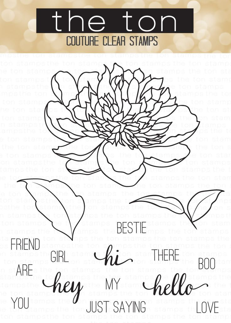 This stamp is part of our Large Peony collection and is perfect for coloring with any medium. - 4x6 inches - 16 stamps - Made of photopolymer - Made in the U.S. Find the full cardmaking tutorial here.