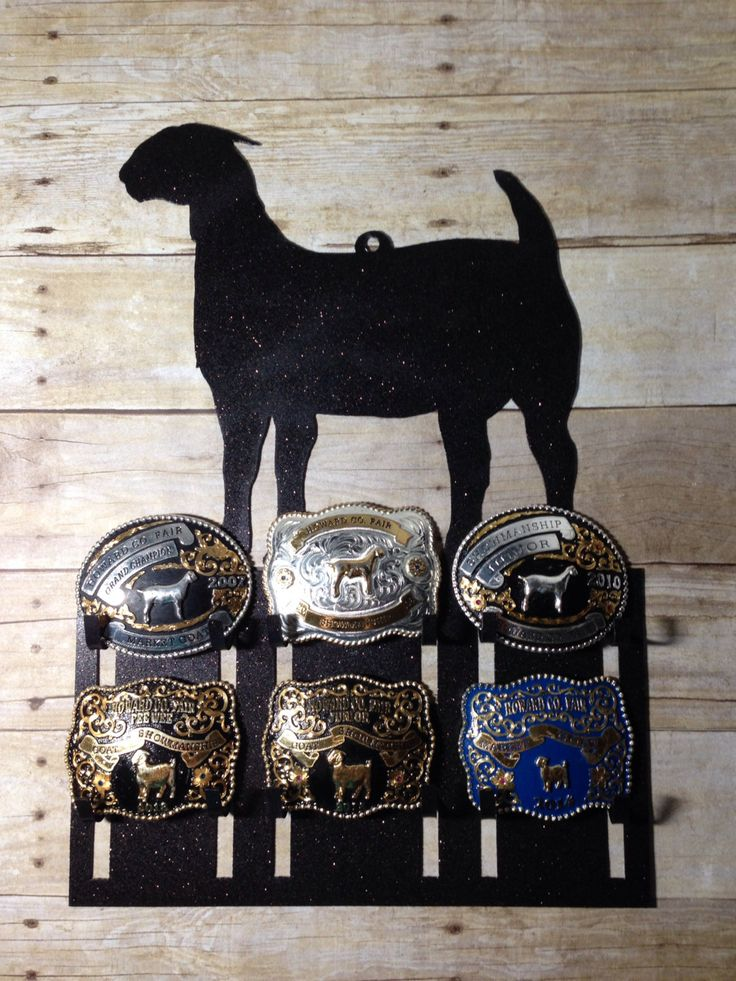 Belt Buckle Display Rack for Livestock and Rodeo Buckles: Perfect for 4-H, FFA, and Rodeo Competitors by J4MetalsAndMore on Etsy