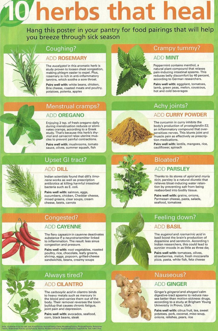 10 herbs that heal >> http://www.januarysunshine.blogspot.com/2011/10/benefits-of-herbs-basil-ginger-cloves.html
