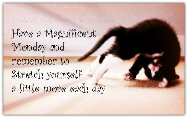 have a magnificent monday and remember to stretch yourself a little more each day  s