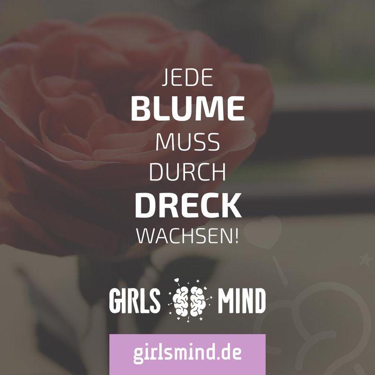 Mehr Sprüche auf: www.girlsheart.de  #schönheit #dreck #sorgen #stress #kämpfen #qual #blume #rose #stolz