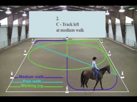 Western Dressage Basic Test 1