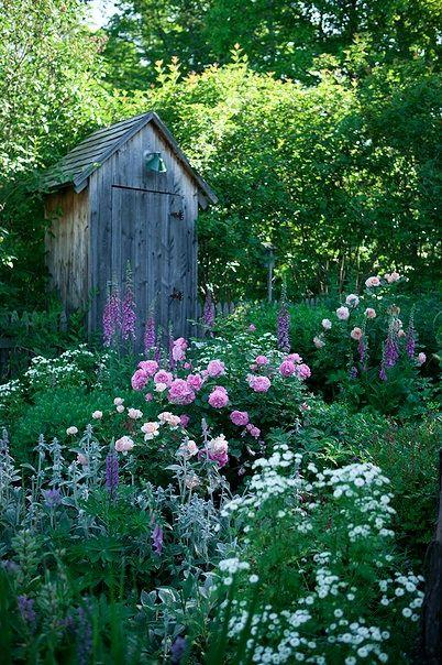 Garden Whimsy Cottage Garden Inspiration- pink roses, marguerites, épiaire laineuse, Pieds d'alouette, sauge