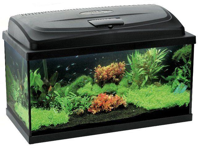 AquaEl Classic 80 Rectangular Tropical Aquarium