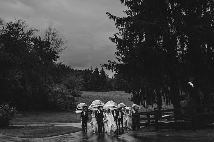 king city horse farm wedding, horse ranch wedding, rainy day tent wedding, pnina tornai lace gown, rustic horse farm wedding