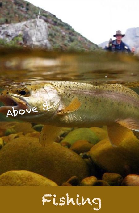 Under Water Fly #Fishing - The value, below, of good wide-angle capability - Tom Lewin fishing the Berg River Western Cape #Flyfishing