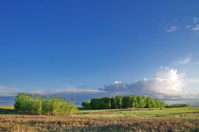 """Love the drama of the sky on an evening hike in Nose Hill Park, Calgary"""