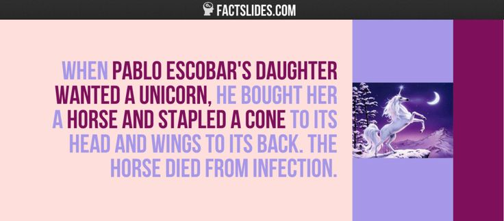 When Pablo Escobar's daughter wanted a unicorn, he bought her a horse and stapled a cone to its head and wings to its back. The horse died…