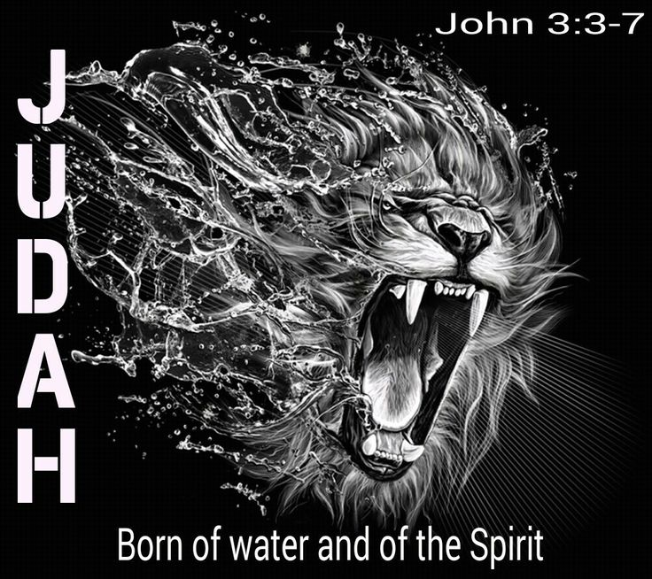 Tribe of JUDAH stand up under CHRIST to lead all the real 12 tribes of ISRAEL Into the Kingdom of AHAYAH ASHER AHAYAH. #HebrewIsraelites spreading TRUTH #IsraelisBLACK
