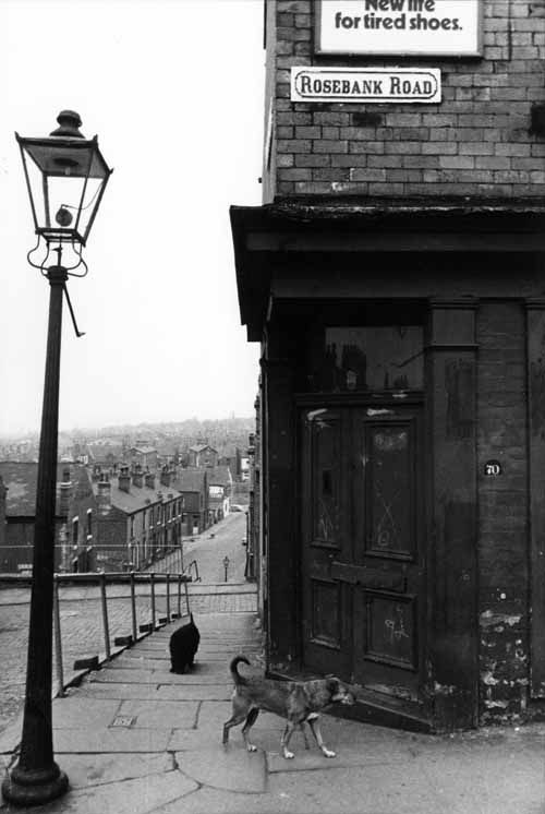 The corner of Rosebank Road and Rosebank View, Burley, Leeds, in 1969. The shop at number 70 was, for many years, run by a grocer, Squire West. Beyond the gas lamp there is a series of shallow steps to Rosebank View and the cobbled Back Rosebank Grove. A second set of steeper steps drop down to Rosebank Grove. The road in the background is Rillbank Street. Two dogs are visible on the railed pavement. The photograph was the work of a young Swiss man, Eric Jaquier, who lived in Leeds for a…
