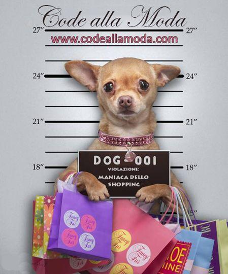 Vieni a fare lo shopping per il tuo cane su Code alla Moda
