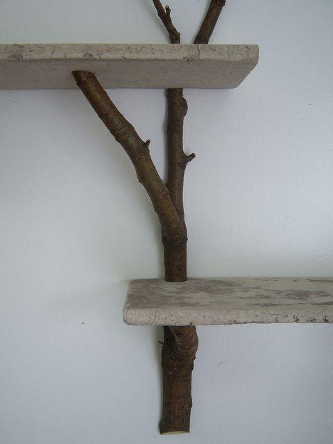 branch shelves