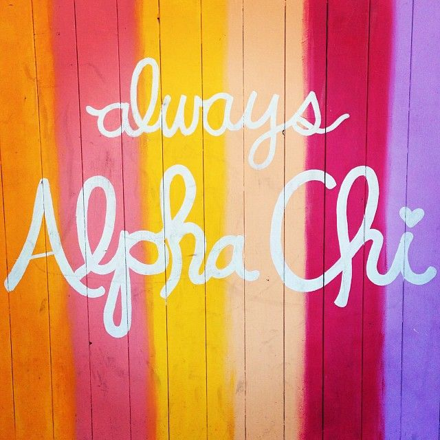 alpha chi omega | sorority sugar