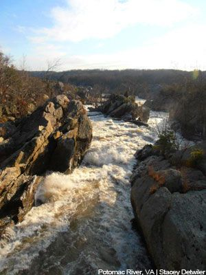 American Rivers | #1 Potomac River. Urge Congress to save the Clean Water Act.  Please click on and vote.