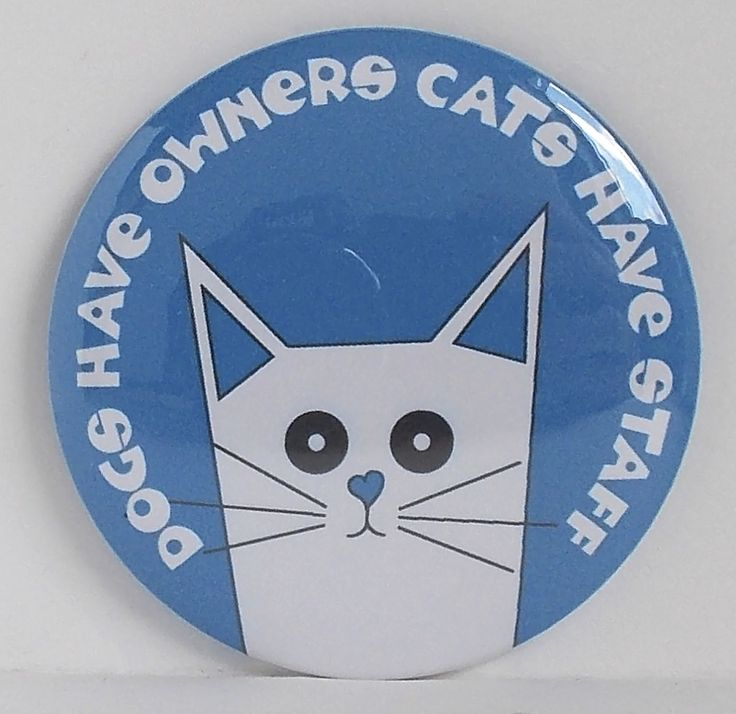 Dogs Have Owners, Cats Have Staff.  True!! And there is an orange version too. #Fridge #magnet, designed, printed and #handmade in #Exeter #Devon #UK.  Created by #GiddySprite, the newest, coolest #British #Brand.  £3.50. International postage available, please contact via website for quote. #GiftsForCatLovers #UniqueCatGifts  #WhiteCat #CatMagnet #CatLover #Cool #Cat #quotes http://www.giddysprite.com/product/pusskin-magnet/