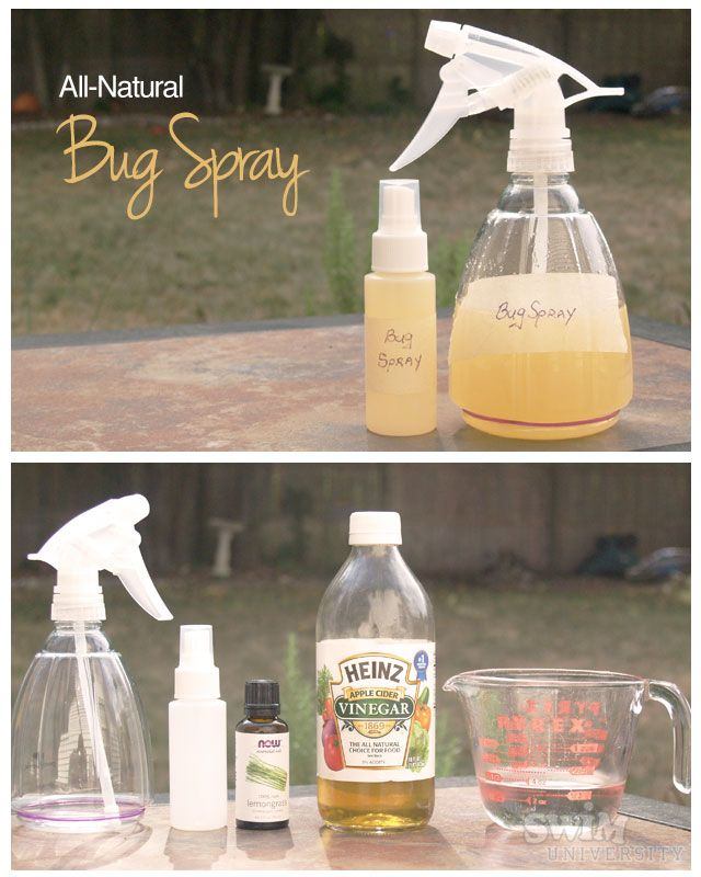 Homemade Insect Repellent Recipe  Ingredients:  1/2 cup distilled water  1/2 cup apple cider vinegar  40 drops of lemongrass essential oil    In a spray bottle, add the distilled water, apple cider vinegar, and essential oil. Shake the bottle and it's ready to use.    You can cut the recipe in half and funnel into a small bottle…travel size!