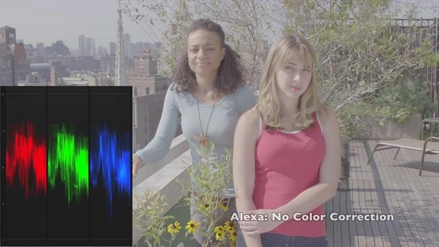 Arri Alexa vs. Sony F3 w/S-Log vs. Canon 7D by Hello World Communications. This is a camera comparison of these three cameras to primarily access latitude and color in a couple of real world locations. The Alexa and F3 were set as closely as possible, both ProRes 4444, both in their respective Log color spaces. The 7D does not offer a true Log color space, but was shot with a flatter picture profile.