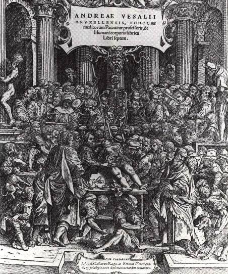 """Frontespizio """"De Humani Corporis Fabrica, Libri Septem"""", di Andrea #Vesalio, 1543."""