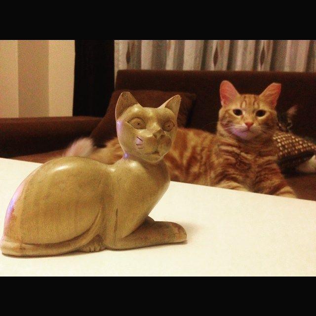 Ahşap oyma kedi figür heykel ve çakıl :)