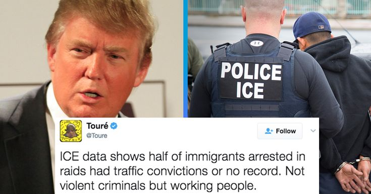 "President Donald Trump says his administration has deported some ""tremendous criminals.""  However, new Immigrations and Customs Enforcement (ICE) data shows it's deporting many other people too."