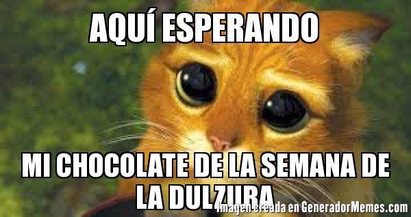 Aqui Esperando Mi Chocolate De La Semana De La Dulzura Meme De Gato Con Botas Imagenes Memes Generadormemes Gato Con Botas Meme Gato Gatos
