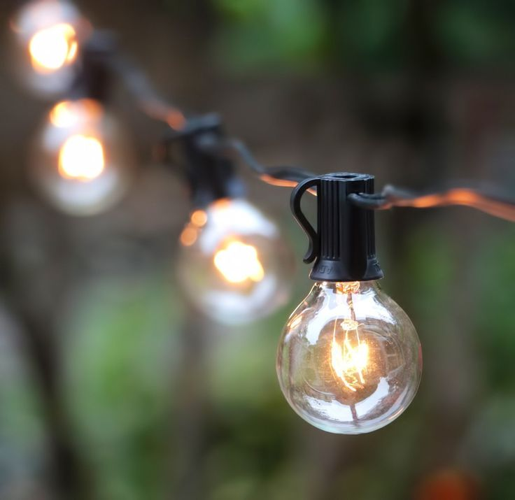 Brightown G40 25 Clear Globe String Light Bulbs, Black, 25-Feet * Read more reviews of the product by visiting the link on the image.