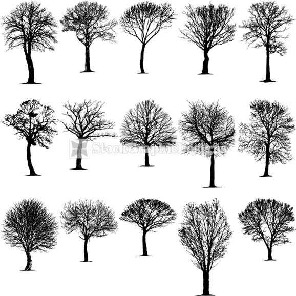 Beautiful! My idea (shape-wise) is most like the middle one. Love love! #tree tattoo #tattoo inspiration