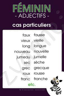 Féminin - Adjectifs - Cas particuliers