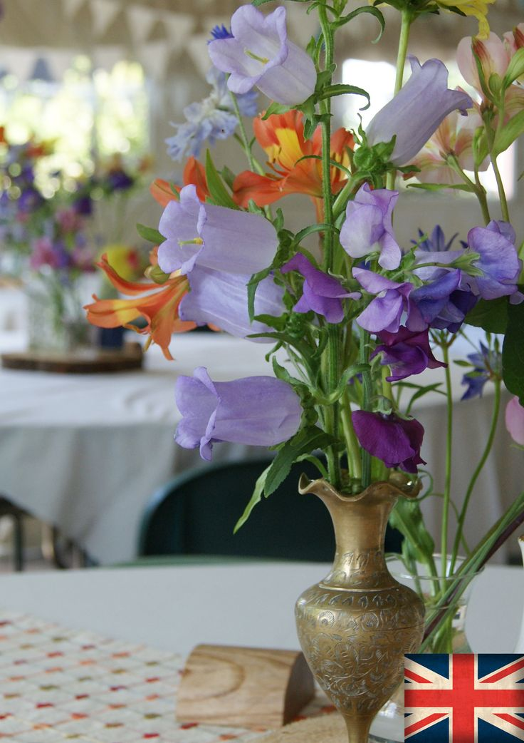 CAMPANULA | Florissimo, Shropshire - Flowers for weddings, events and businesses in Shropshire and beyond. British-grown bell-like campanula generally avail July