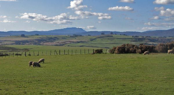 White Hills: the beautiful rural countryside of Tasmania
