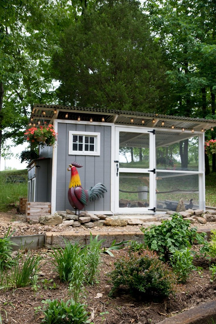 best 25 chicken coop designs ideas on pinterest chicken coops