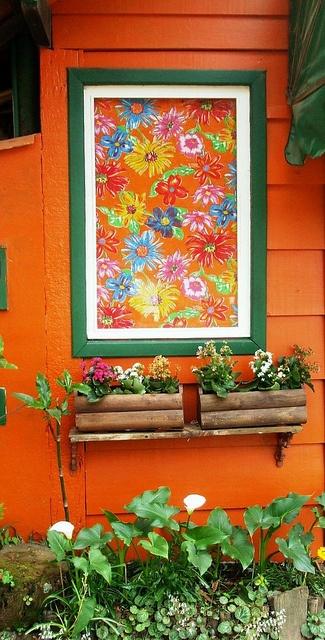Chita na janela by Santinha - Casas Possíveis, via Flickr