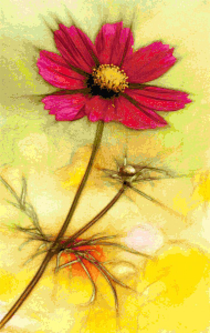 Cosmos flower. Free cross stitch pattern