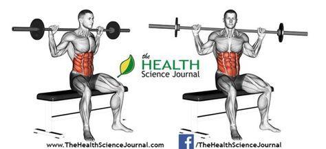 © Sasham   Dreamstime.com - Exercising for bodybuilding. Seated Barbell Twist