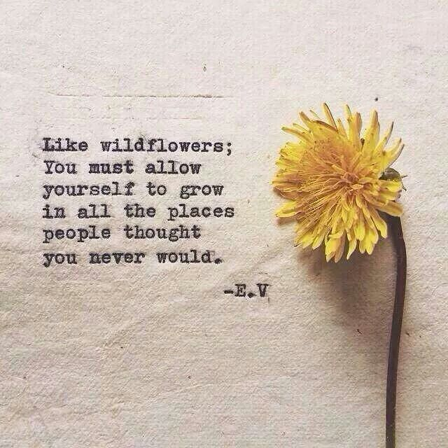 """""""Like wildflowers; you must allow yourself to grow in all the places people thought you never would."""" - E.V."""