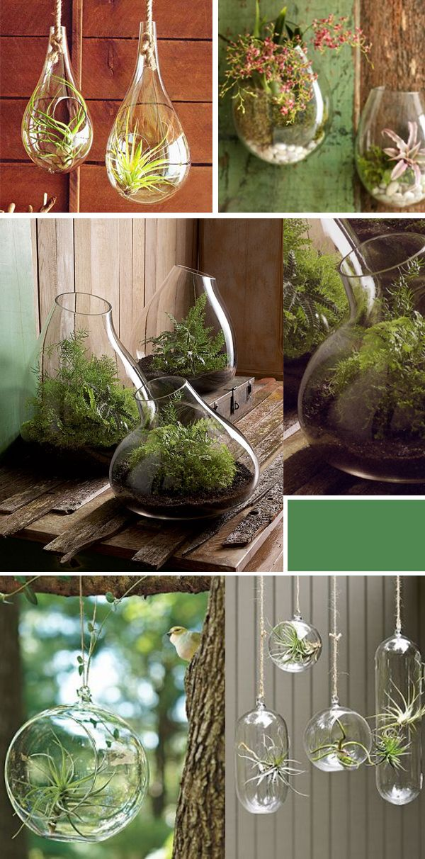 September and Sun: Hanging Terrariums: An Unexpected Way to Display Plants {Indoors & Outdoors}