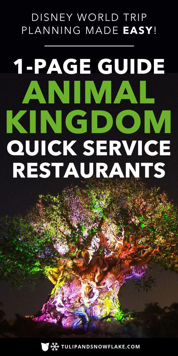 Animal Kingdom Quick Service Restaurants