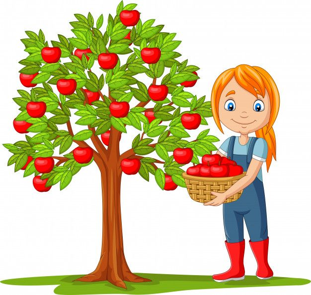Isolated Girl Farmer Gathering Apples In Basket Art Drawings For Kids Painting For Kids Flower Drawing