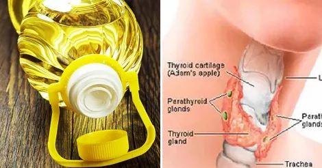 Ecco come l'Olio sta danneggiando la tua Tiroide