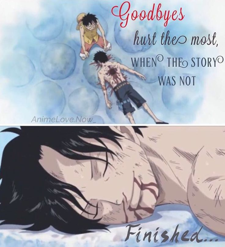 Goodbyes hurt the most when the story was not finished. Luffy X Ace