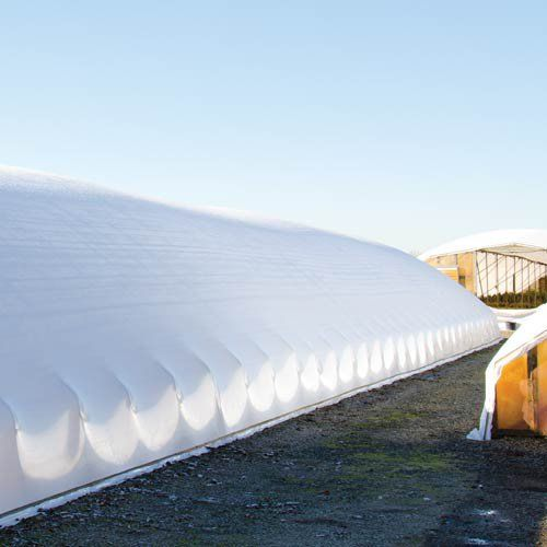 Overwinter Poly Film : Sun Selector Overwinter PLUS Greenhouse Film 4 mil 70% White (Per sq.ft)