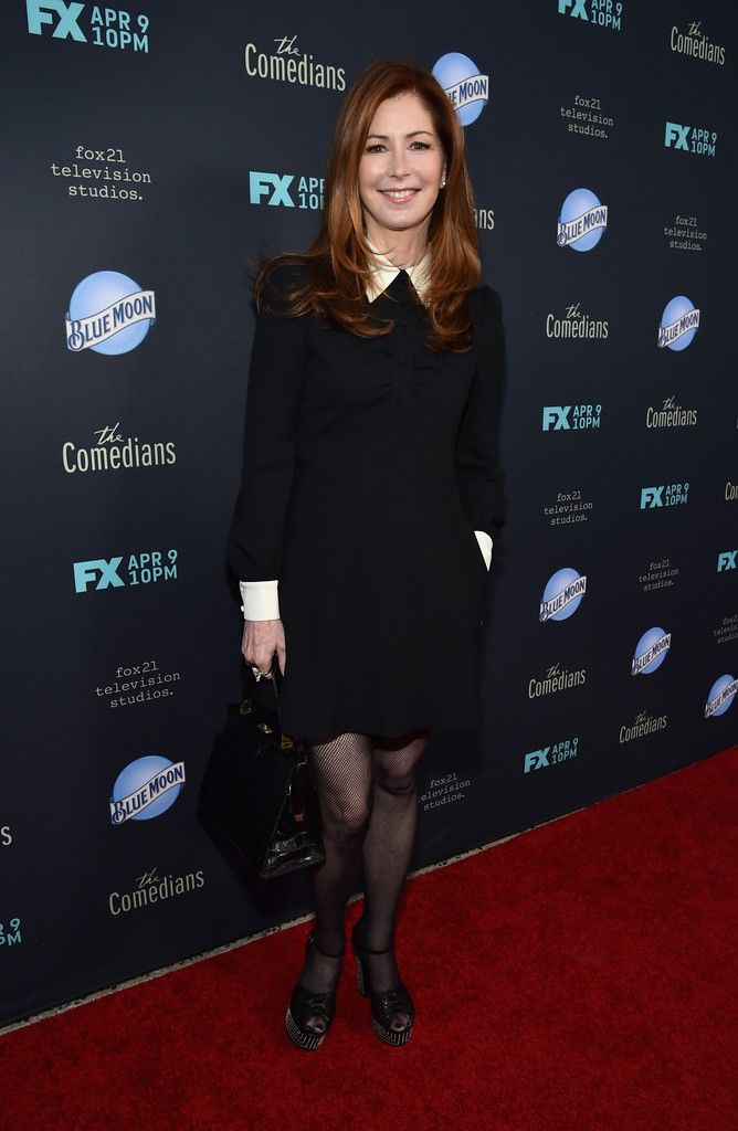 "Dana Delany Photos: Premiere Of FX's ""The Comedians"" - Red Carpet"