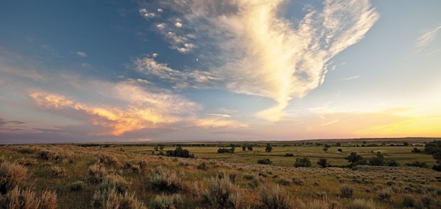 This is the battlefield at Little Bighorn, as it might have looked to Fox before the battle.
