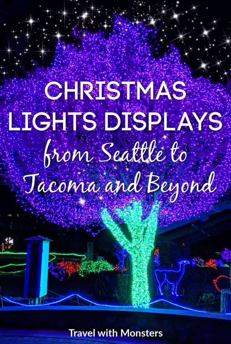 Check out the best places to see Christmas lights around
